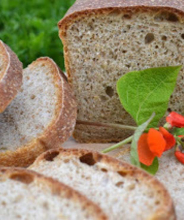 Chleb fasolowy z rozmarynem - Chleby