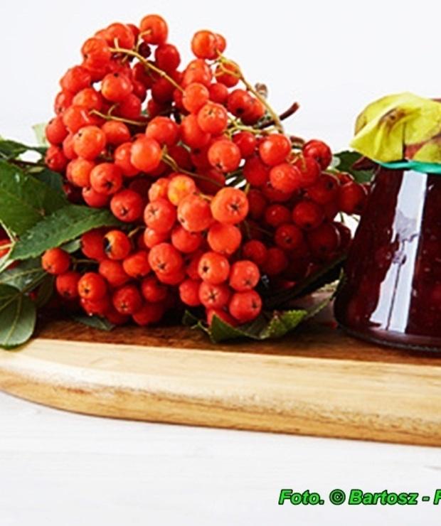 Dżem z owoców jarzębiny.  - Owocowe