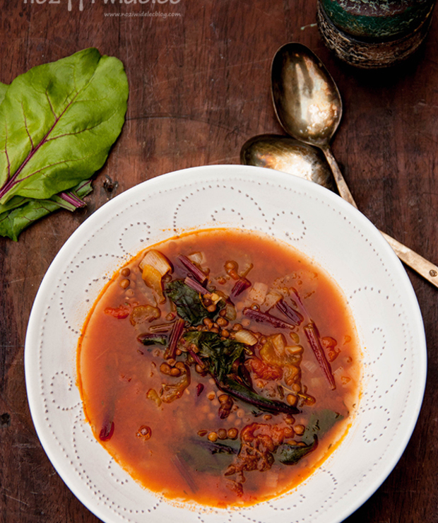 Letnia zupa. Botwinka, soczewica i berbere - Z warzywami
