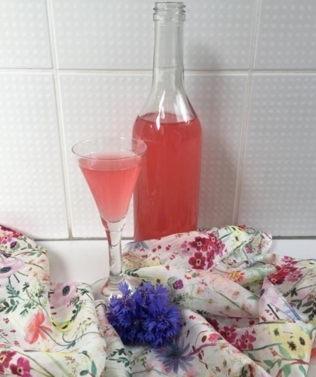 Winko z modraków - Zimne