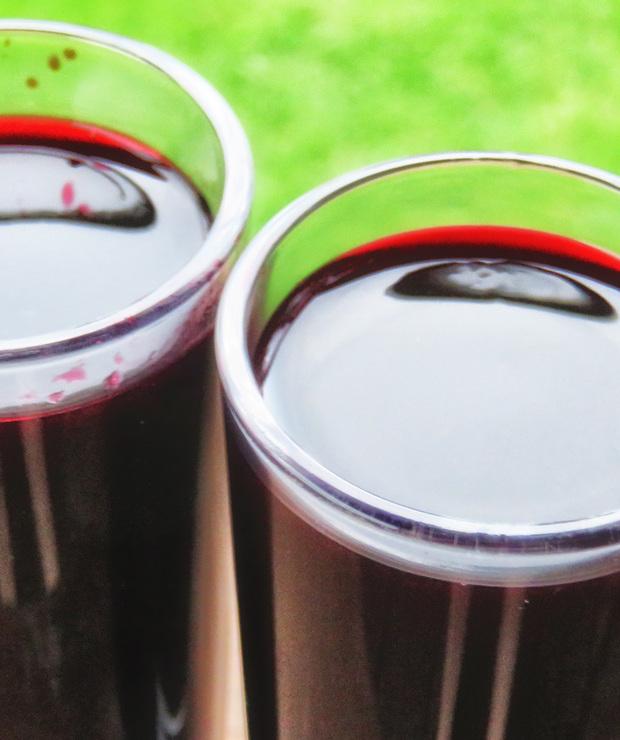 Likier jagodowy – jagodzianka - Alkoholowe