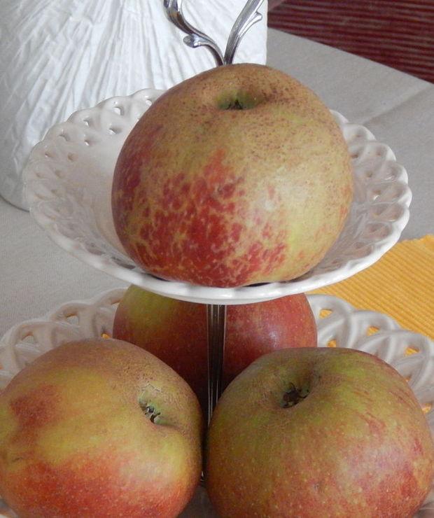 Marcepanowy jabłecznik. - Szarlotki