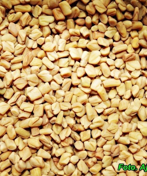 Nalewka  z nasion kozieradki  ( na lepszą pamięć i poprawę apetytu ). - Alkoholowe