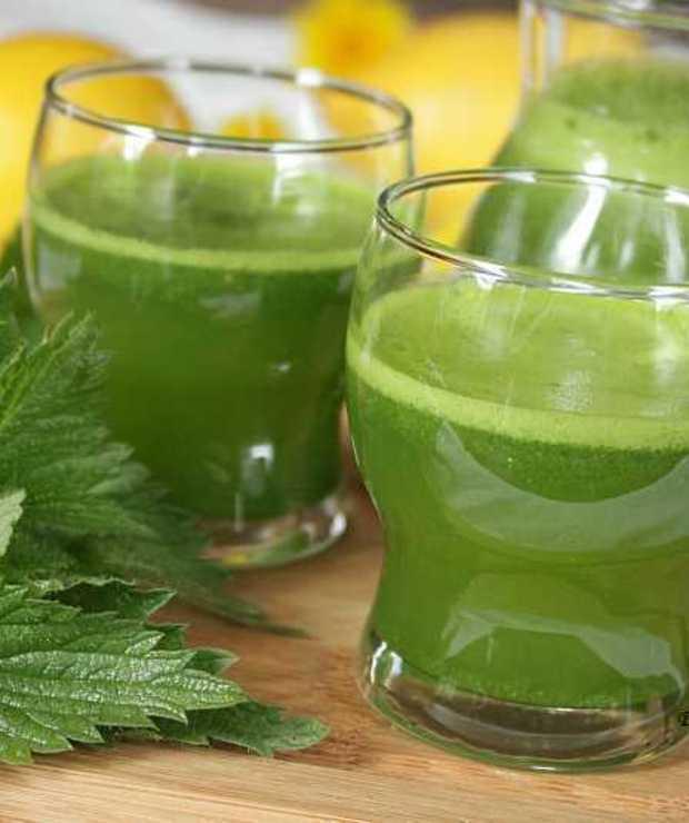 pyszny napój z młodej pokrzywy - Zimne