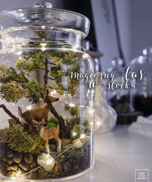 Magiczny las w słoiku - Produkty