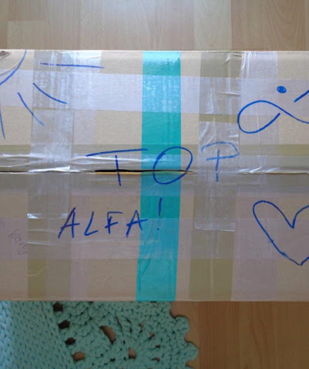 Alfa-koszyk- ratunek dla poszukujących zdrowia - Sklepy