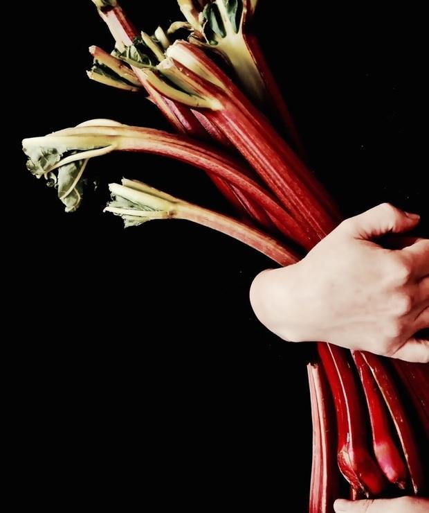 Rheum barbarum - Potrawy