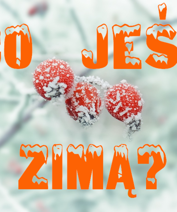 Co jeść zimą? - Produkty