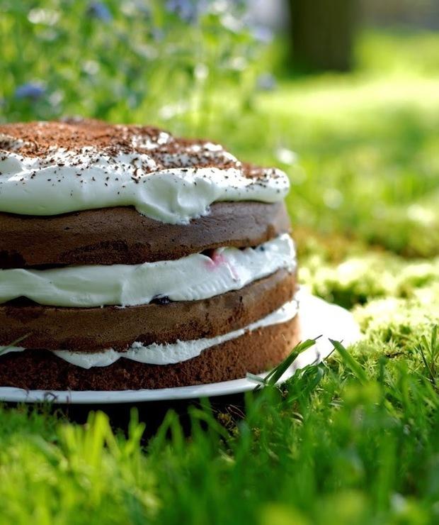 Tort czekoladowy z bitą śmietaną, dżemem wiśniowym i malinami - Torty
